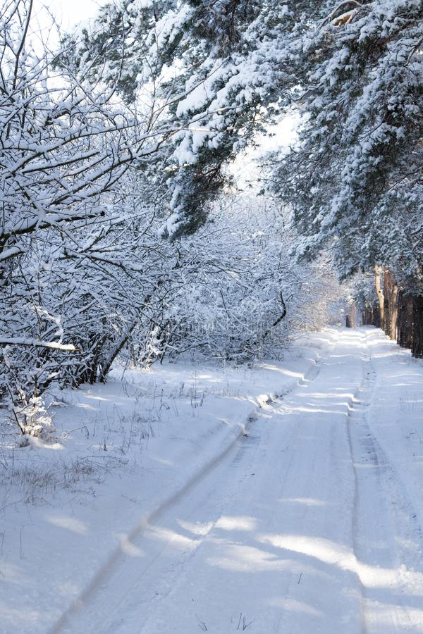 Camino del campo en la pista del coche del invierno en el camino imagenes de archivo