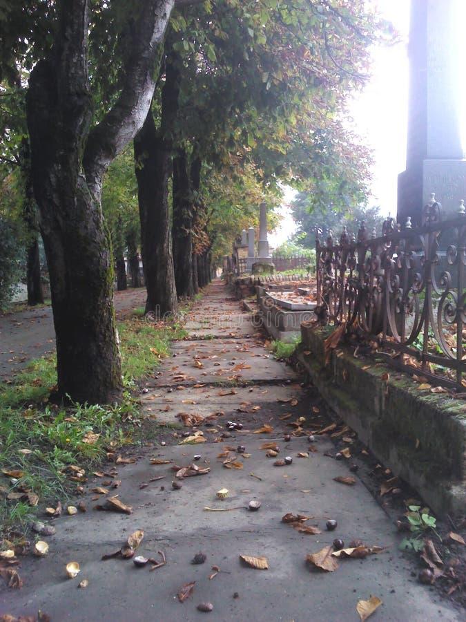 Camino del cementerio de la caída foto de archivo