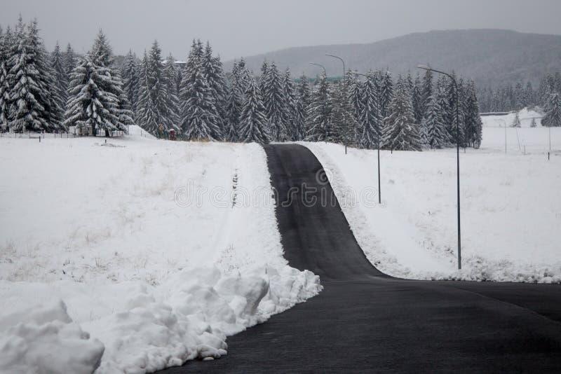 Download Camino del invierno imagen de archivo. Imagen de árboles - 41902841