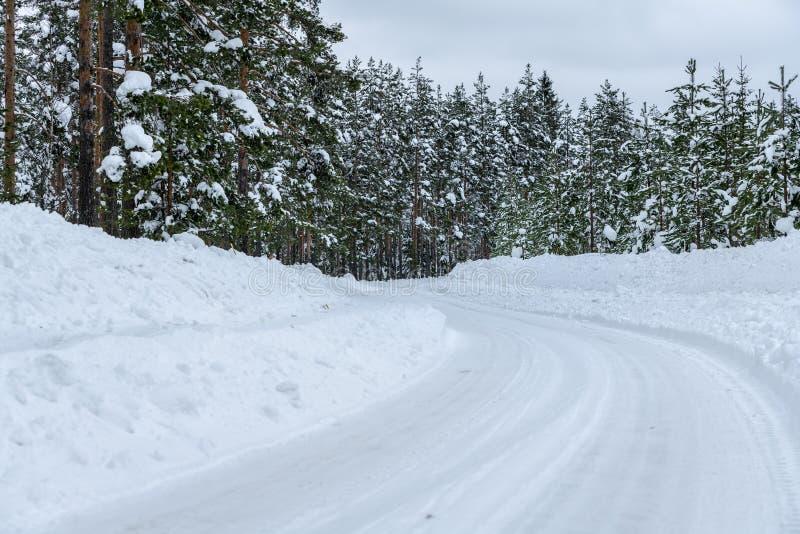 Camino del invierno que pasa a través de un bosque del pino en Suecia septentrional imágenes de archivo libres de regalías