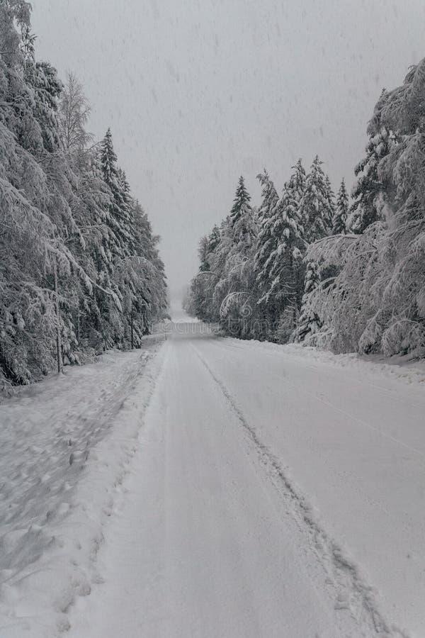 Camino del invierno que pasa un bosque en Suecia fotografía de archivo libre de regalías
