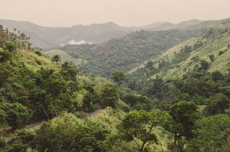 Camino del mouintain de la bobina, montañas y vegetación tropical verde enorme en día cubierto en Ring Road, el Camerún, África fotografía de archivo libre de regalías