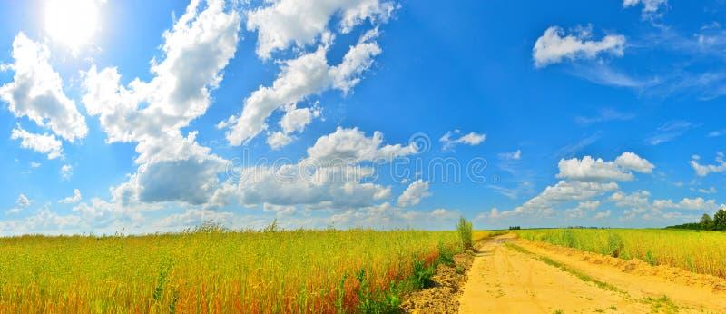 Download Camino del verano foto de archivo. Imagen de prado, paisaje - 42440512