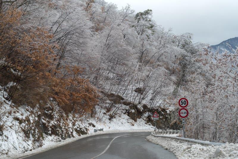 Camino después de la tormenta de hielo imágenes de archivo libres de regalías