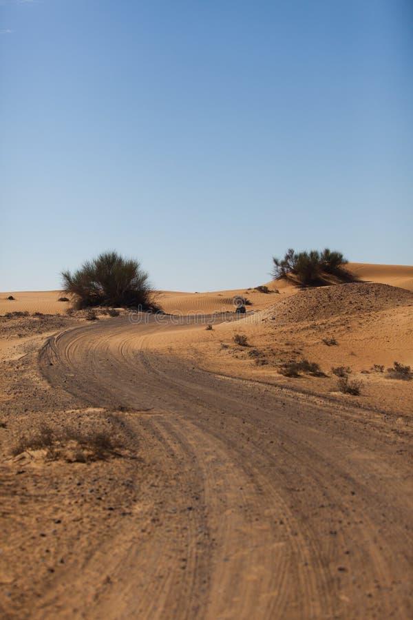 Camino en desierto fotos de archivo libres de regalías