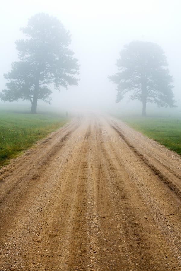 Camino en el Black Hills de Dakota del Sur imagen de archivo libre de regalías