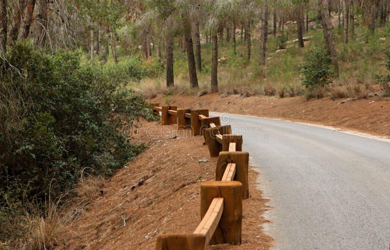 Camino en el bosque con la barandilla de madera fotografía de archivo