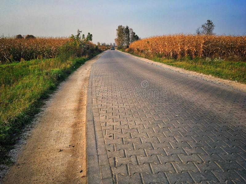 Camino en el condado de Sochaczew fotos de archivo
