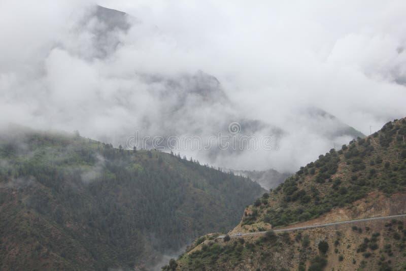 camino en la meseta de Qinghai Tíbet imágenes de archivo libres de regalías