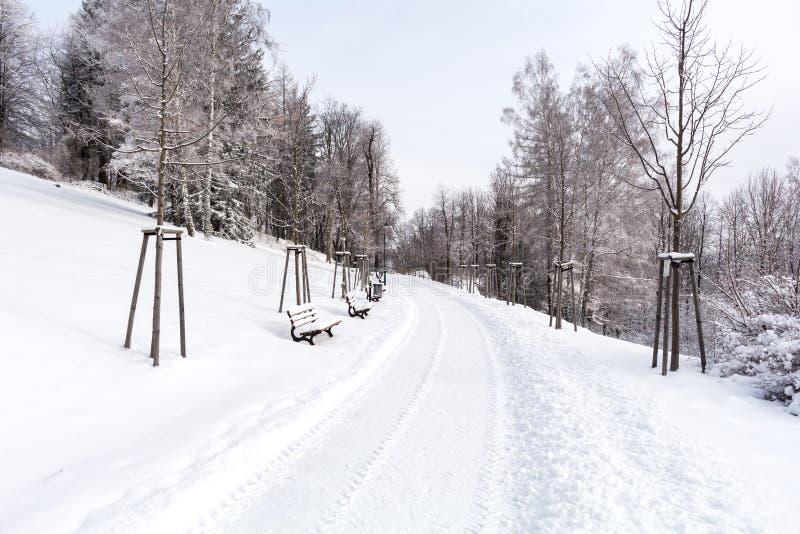 Camino en las montañas cubiertas con nieve Paisaje del invierno El concepto de libertad y de movimiento foto de archivo