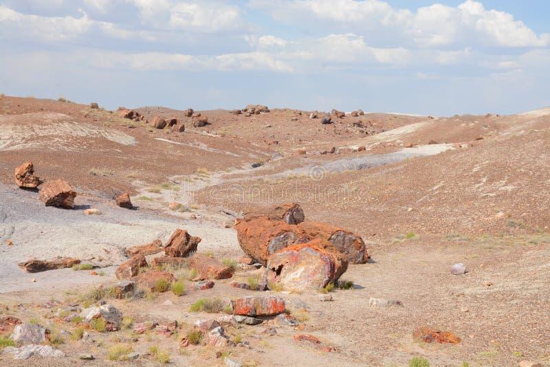 Camino en las montañas del desierto en Arizona fotografía de archivo