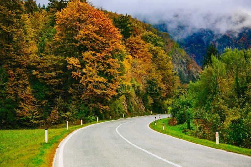 Camino en las montañas, Eslovenia, sangrada, Bohinj Vista escénica de los bosques y de las colinas otoñales coloridos fotografía de archivo libre de regalías