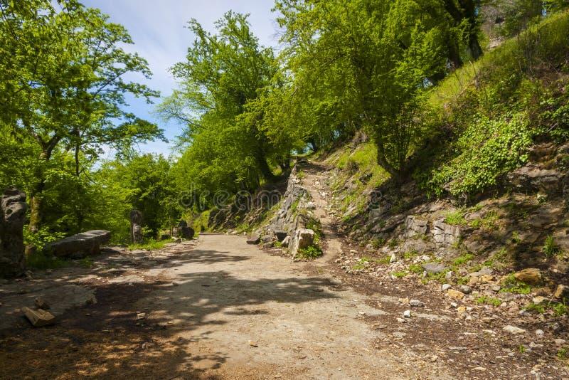 Camino en montañas imagenes de archivo