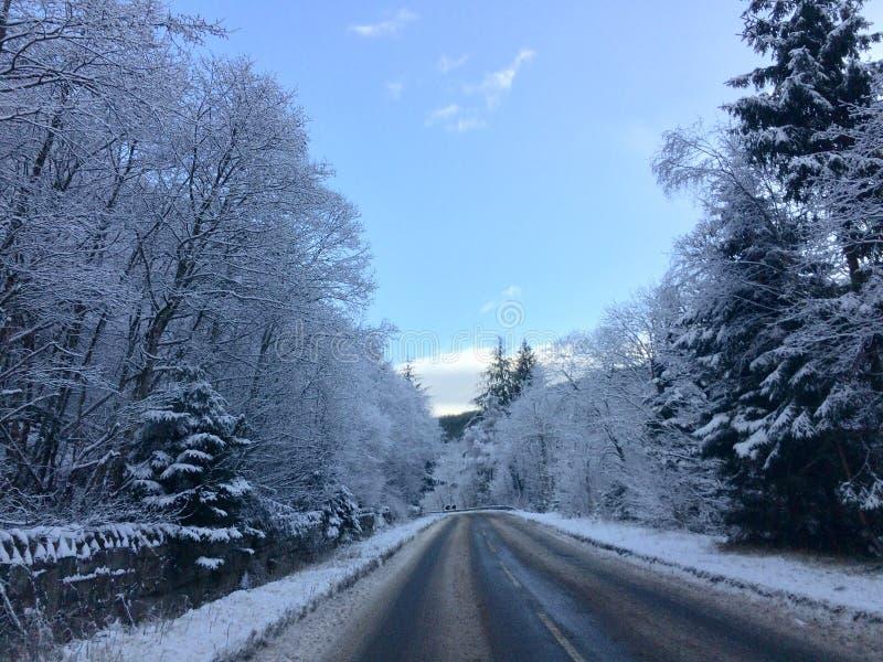 Camino en nieve imagenes de archivo