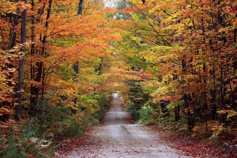 Camino en otoño imagenes de archivo