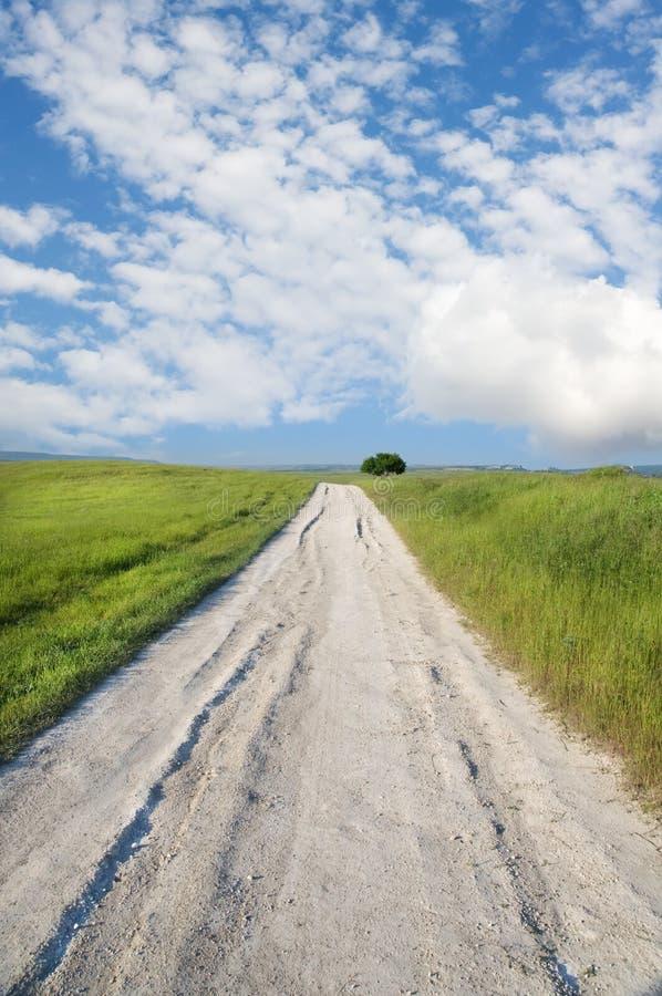 Camino en prado verde fotos de archivo