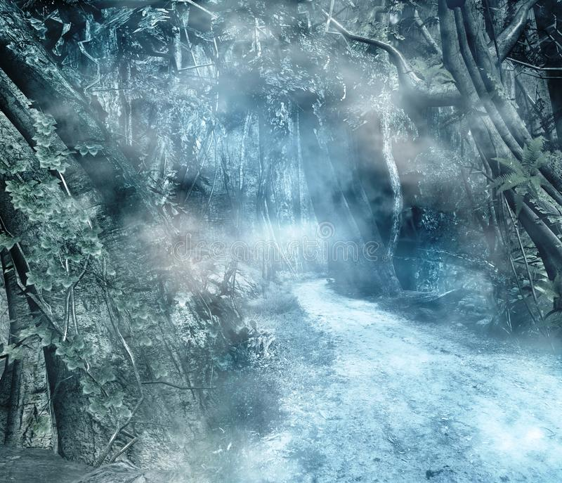 Camino en un bosque encantado libre illustration