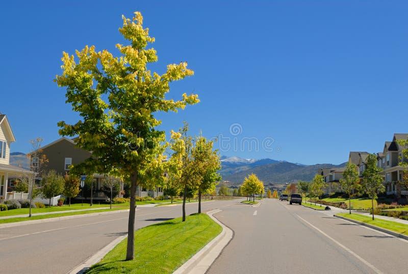 Camino en vecindad suburbana foto de archivo libre de regalías