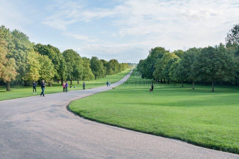 Camino en Windsor Great Park, Berkshire, Londres, Inglaterra, Reino Unido fotografía de archivo