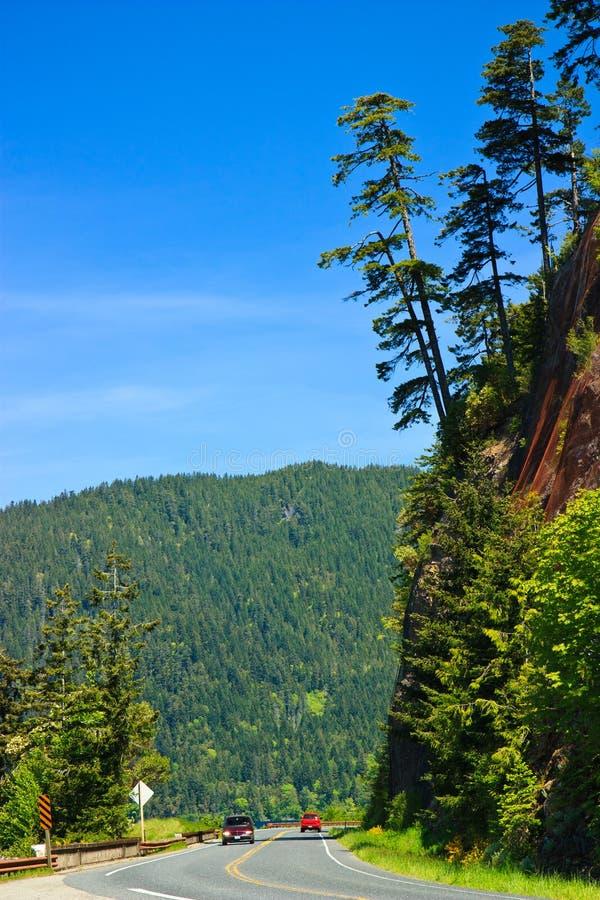 Camino escénico, parque nacional olímpico, Washington fotografía de archivo libre de regalías