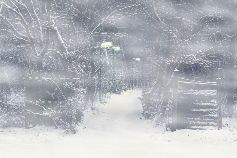 Camino forestal con una puerta de madera y faroles encendidos en una noche espeluznante y de niebla, escena asustadiza del horror fotos de archivo libres de regalías