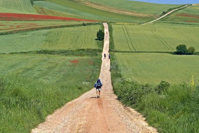 Camino Frances που οι προσκυνητές στο αγροτικό τοπίο στοκ φωτογραφία με δικαίωμα ελεύθερης χρήσης