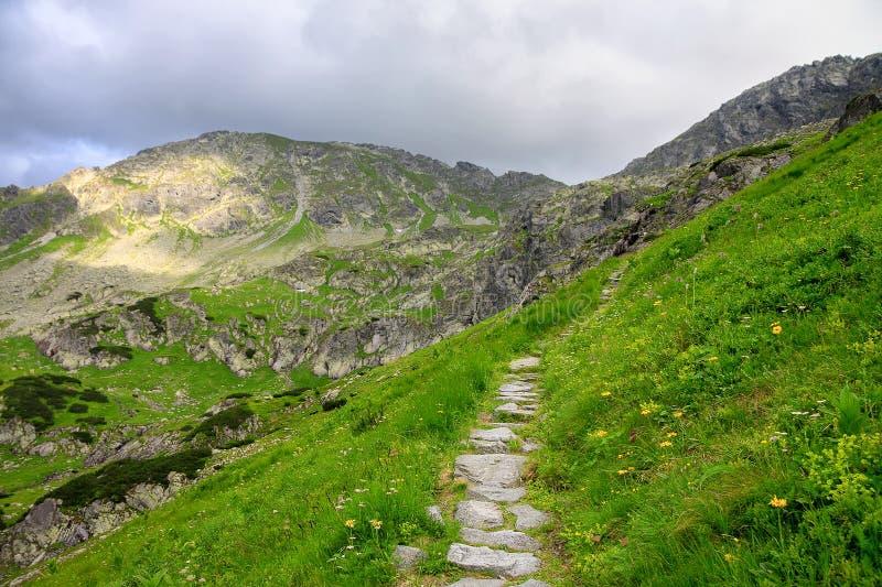 Camino hecho de piedras a través de la colina verde en montañas imagen de archivo