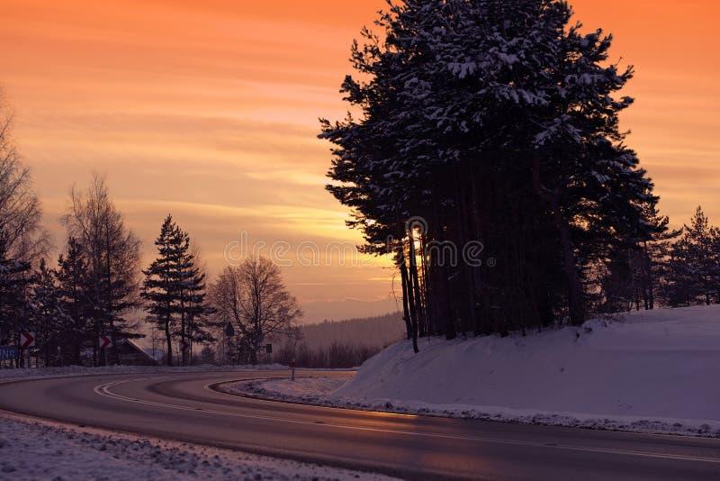 Camino helado del invierno foto de archivo