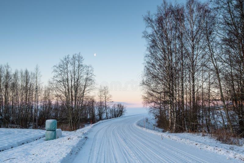 Camino helado en un campo por una mañana del invierno imágenes de archivo libres de regalías