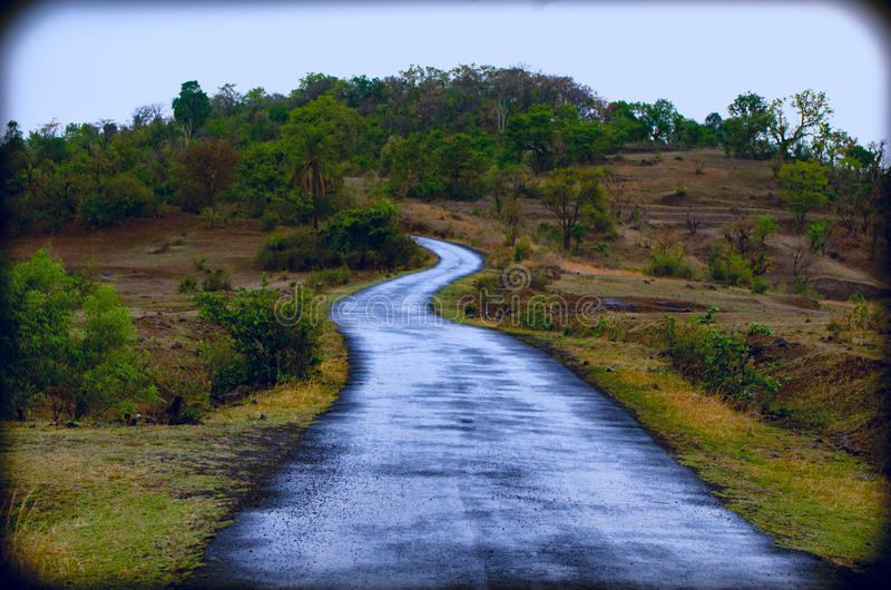 Camino hermoso foto de archivo