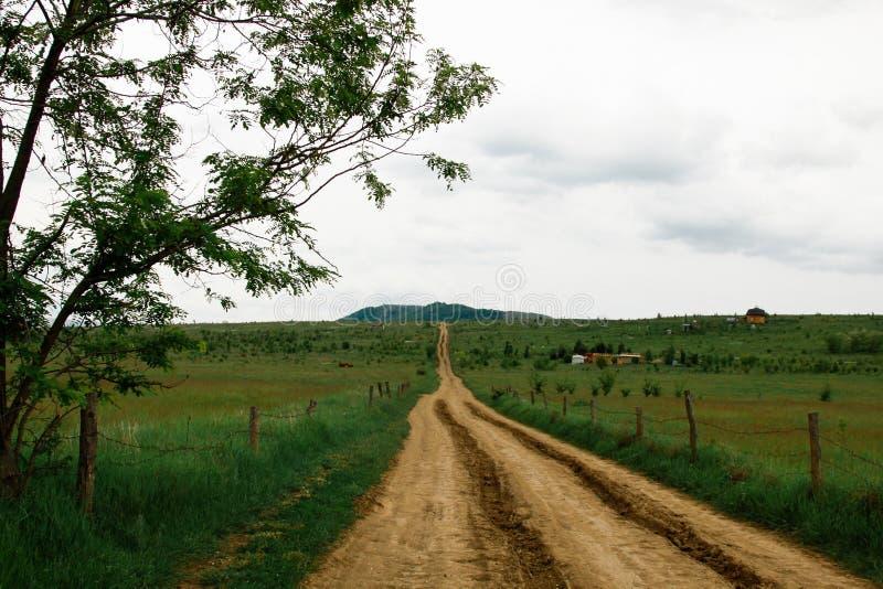 Camino hermoso de la grava en campos agrícolas enormes verdes amarillos de la cosecha en un día de verano foto de archivo