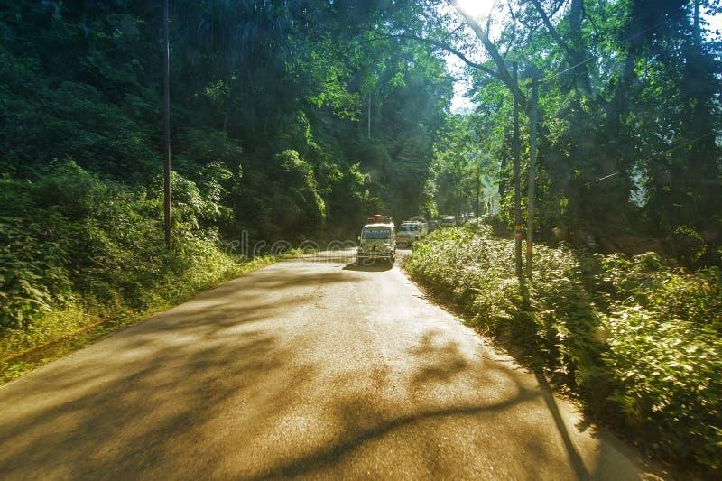 Camino iluminado por el sol de Sikkim imagen de archivo libre de regalías