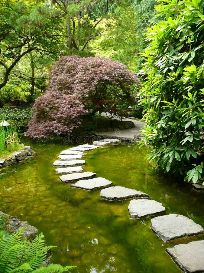 Camino japonés del jardín foto de archivo