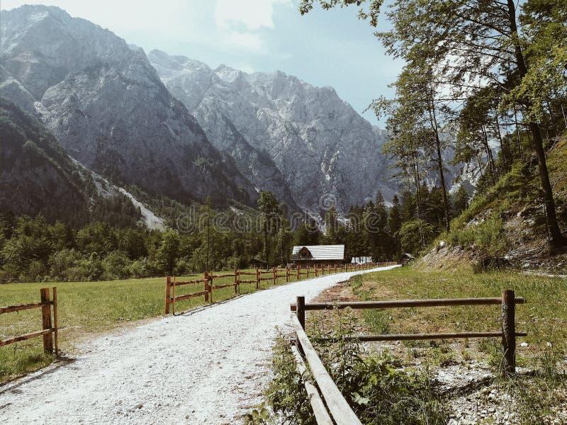 Camino a la naturaleza imagen de archivo