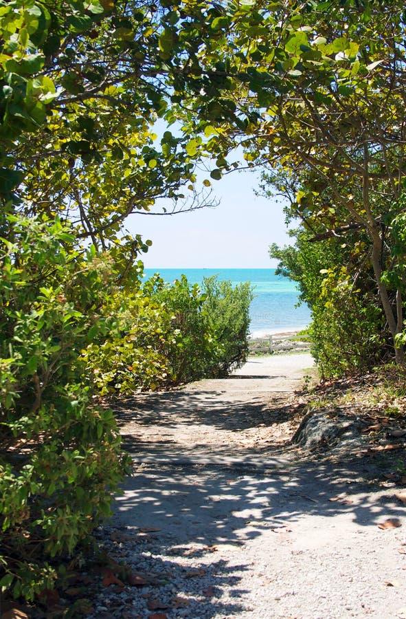 Camino a la playa imagen de archivo libre de regalías