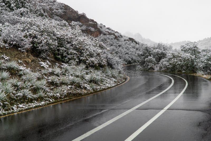Camino mojado que lleva a trav?s del jard?n de dioses Colorado Springs imagen de archivo libre de regalías