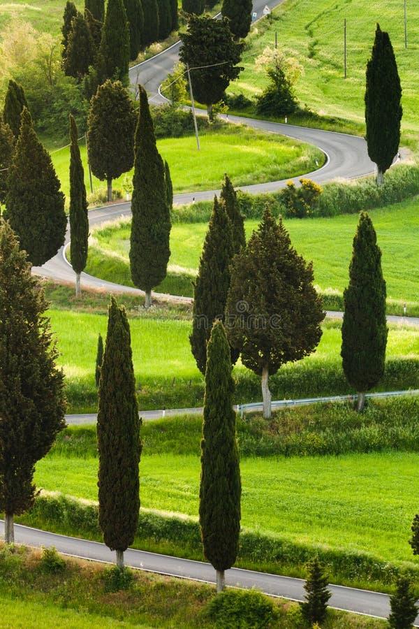 Camino, Montepulciano, Toscana, Italia imágenes de archivo libres de regalías