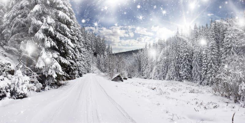 Camino nevado del invierno imagen de archivo libre de regalías