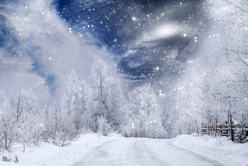Camino nevado del invierno fotos de archivo libres de regalías