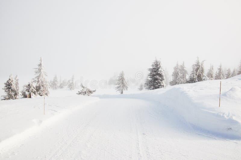 Camino nevado del invierno en Noruega fotos de archivo libres de regalías
