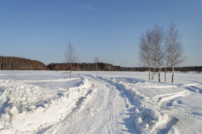 Camino nevado en el país, día de invierno soleado fotografía de archivo libre de regalías