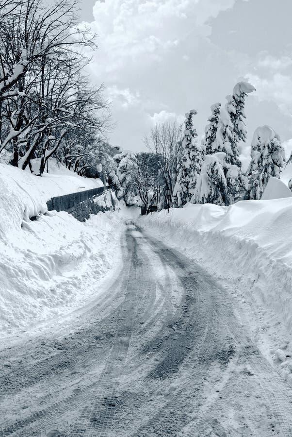 Camino nevoso asombroso fotografía de archivo