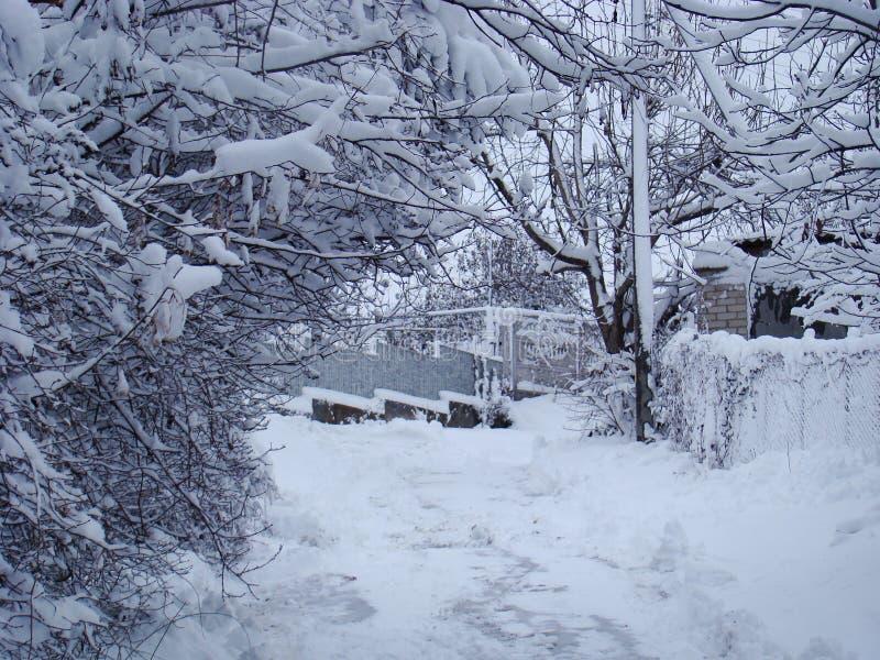 Camino nevado en la aldea Foto nevada imagen de archivo