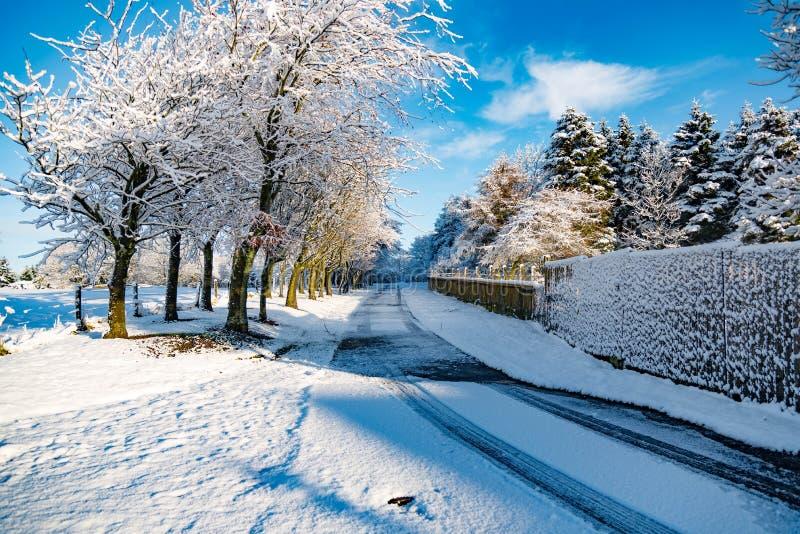 Camino nevado escénico con un cielo azul claro imagen de archivo libre de regalías