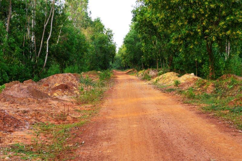 Camino o camino rural hecho en suelo ha ido dentro de la aldea y bosque o selva bajo el cielo azul imagenes de archivo