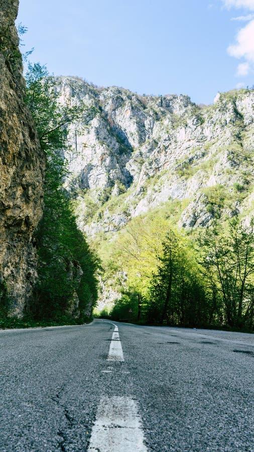 camino pavimentado en el barranco del r?o de Tara, en el parque nacional de Durmitor, Montenegro Valle del camino entre la monta? imagenes de archivo