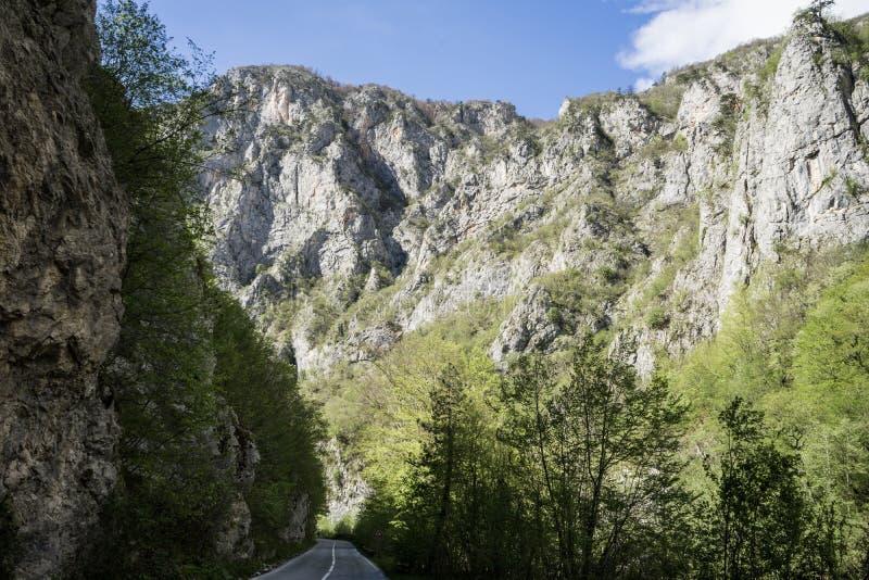 camino pavimentado en el barranco del r?o de Tara, en el parque nacional de Durmitor, Montenegro Valle del camino entre la monta? imagen de archivo