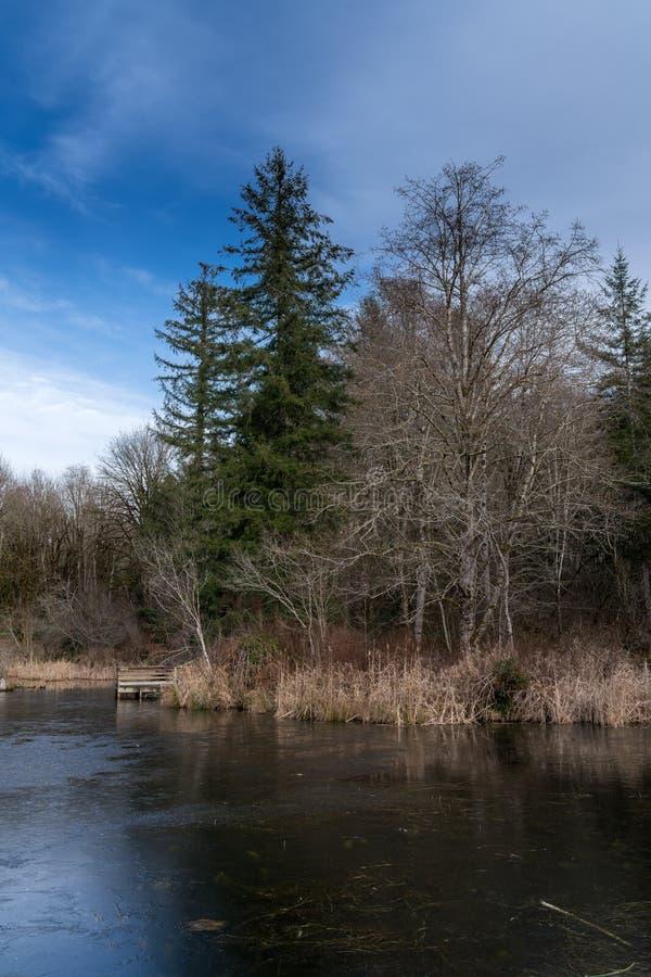 Camino perdido de la charca del castor, río, Woodstock NH 03262 fotos de archivo