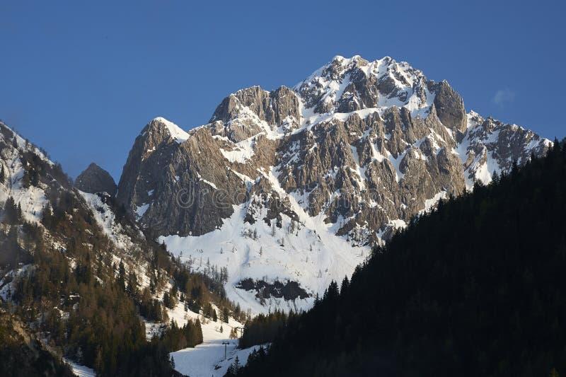 Camino pizzo держателя стоковое изображение