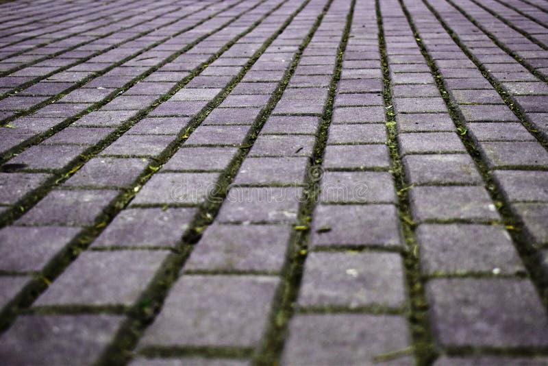 Camino que camina hecho de piedras de pavimentación del cemento foto de archivo